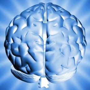 Brain-Power_604_2