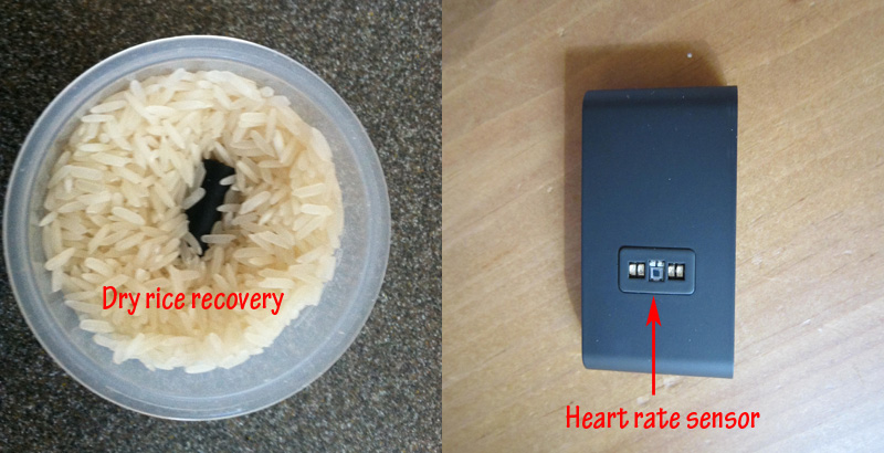 withings-pulse-rice-heart-rate-sensor