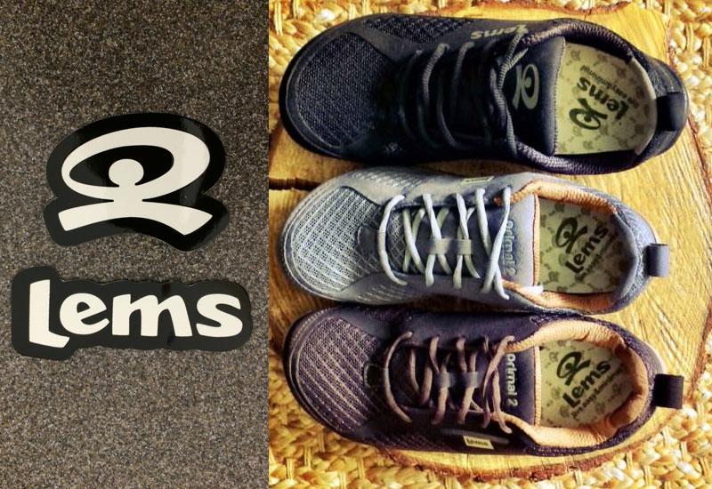 lems-primal2-new