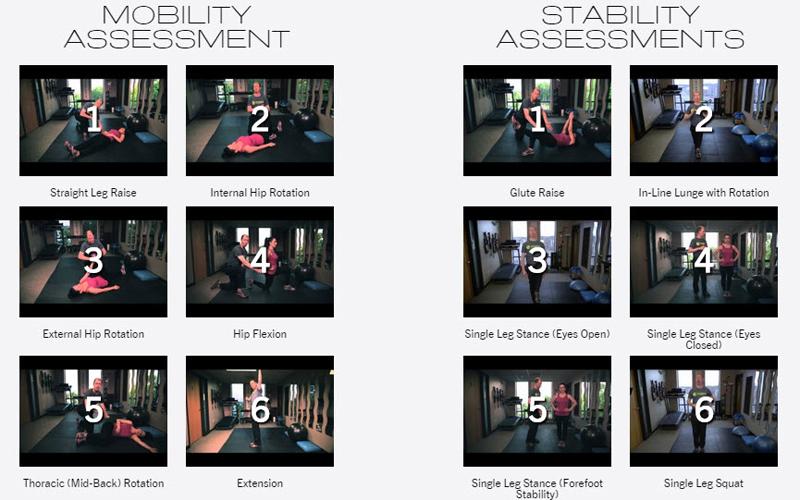 acu-assess-videos
